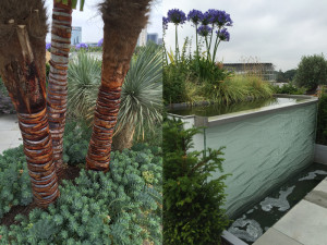 roof-garden-water-feature